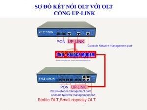 Chức năng của ONT và OLT trong mạng EPON và GPON
